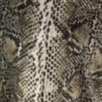 Python Shimmer